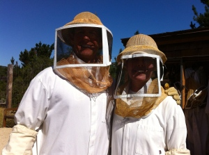 Keeping bees with my honey